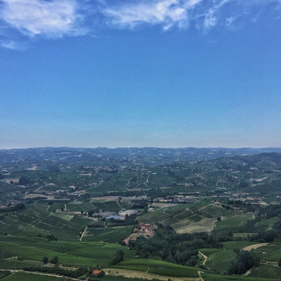 Looking out from the La Morra onto the rolling wine land of Piedmont in northern Italy.